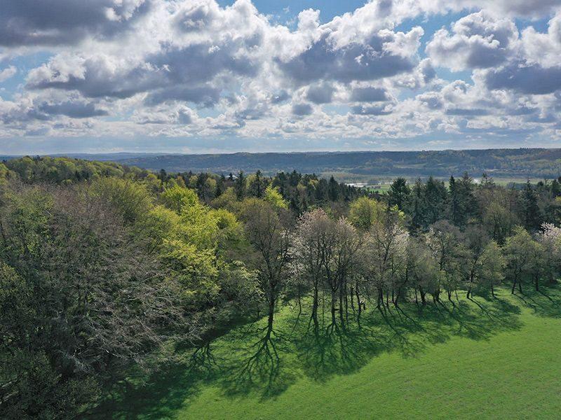 Sdr. Tulstrup udgør 110 hektar smukt beliggende i en dramatisk natur som del af Guden Å-dalen.